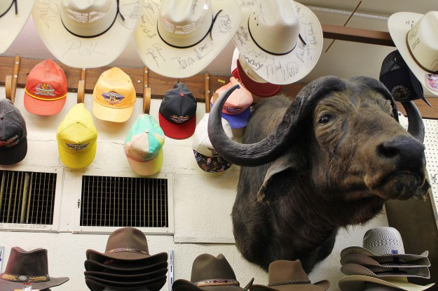 Cowboy hats at Nigro's Western Store in Kansas City