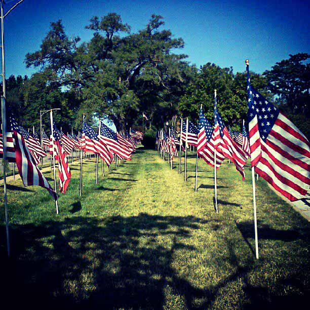 Flags on the Fourth of July