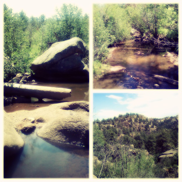 Curt-Gowdy-State-Park