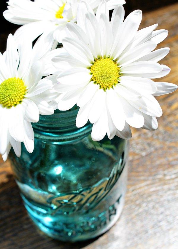 Daisies in a Mason Jar